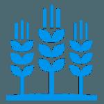 Производство сельхоз продукции