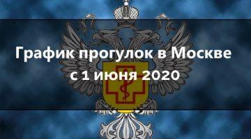 График прогулок в москве с 1 июня